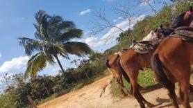 Cuba Girls Maren 2019 (85)